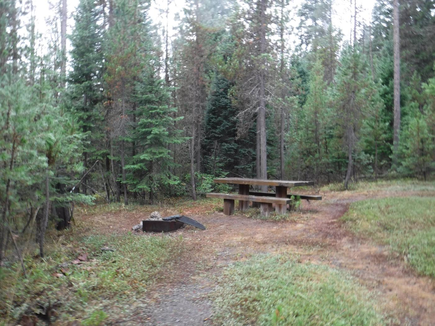 Flat campsite with one picnic table and fire ring.009