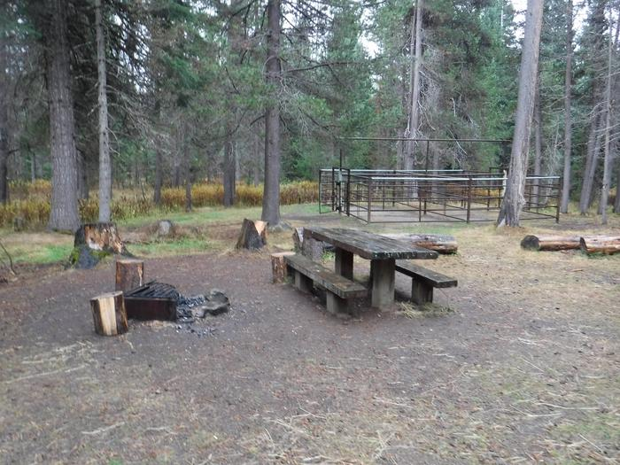 Flat campsite with one picnic table, fire ring and corral.B1