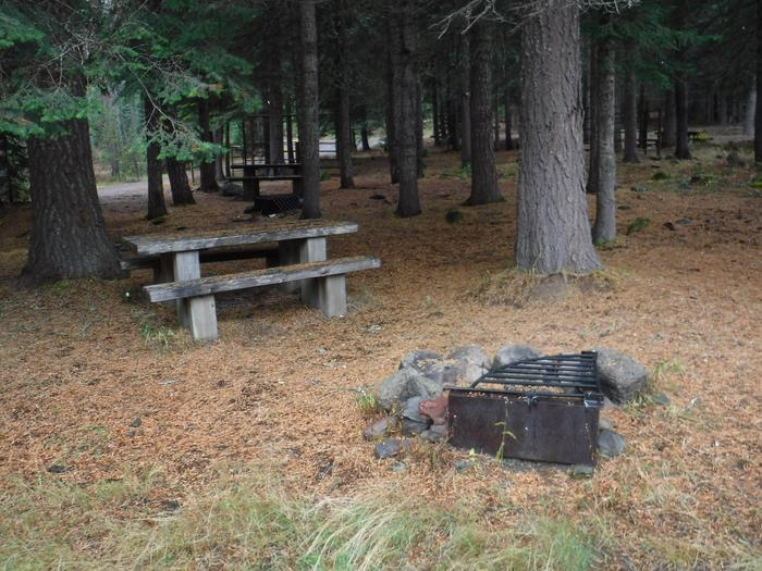 Flat campsite with one picnic table, fire ring and corral.B2