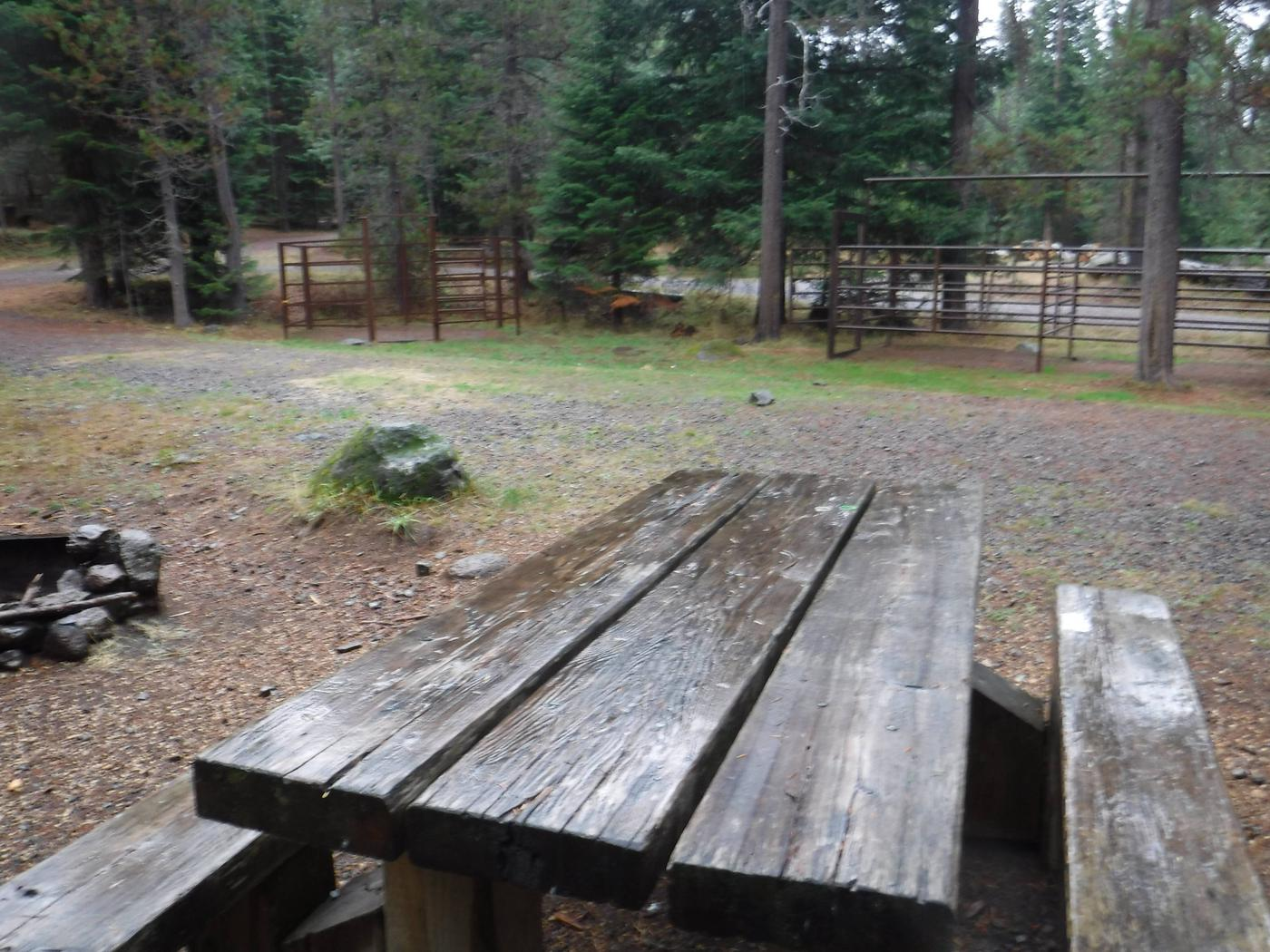 Flat campsite with one picnic table, fire ring and corrals.B3