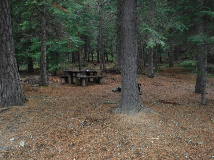 Flat campsite with one picnic table, fire ring and corral.B5
