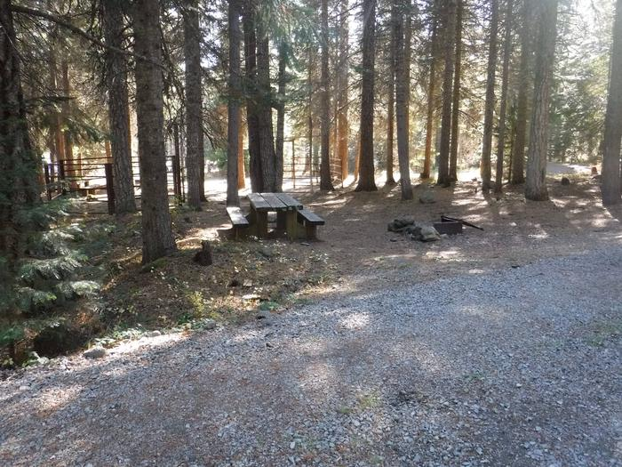 Flat campsite with one picnic table and fire ring.B6