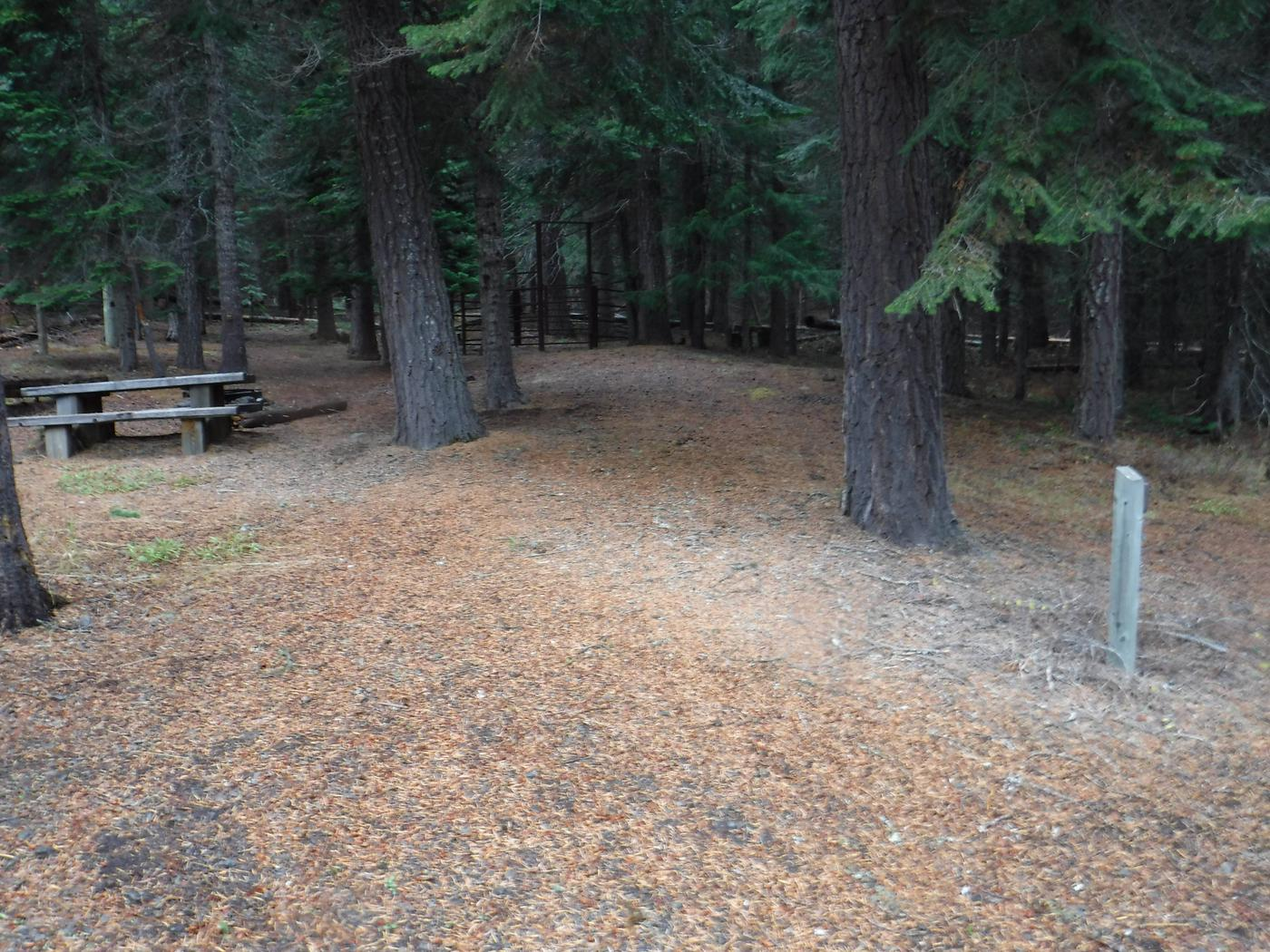Flat campsite with one picnic table, fire ring and corral.B7