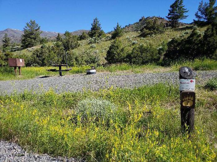 Rex Hale Campground campsite open area