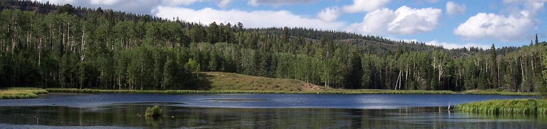 Upper Barker Reservoir surrounded by aspen and conifer trees.Barker Reservoir