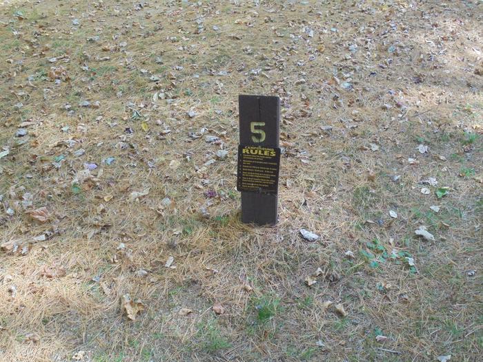Site 5
