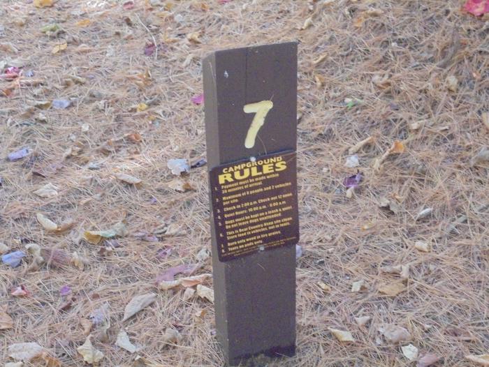 Site 7