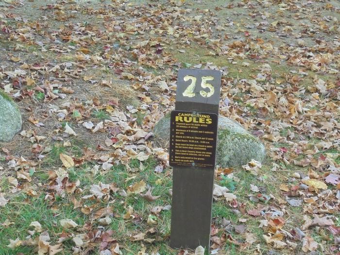 Site 25