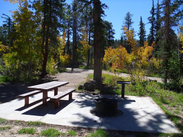 B - Loop campsite