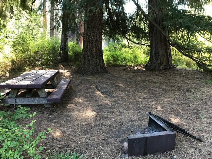Allen Springs Campground #5