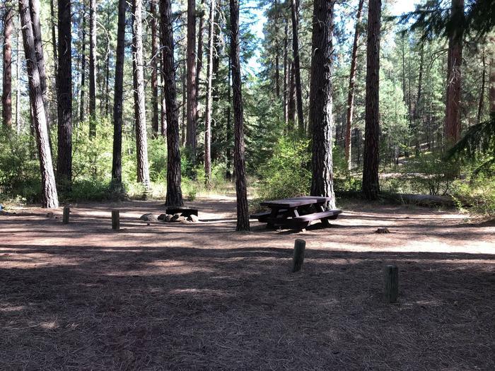 Allingham Campground #2
