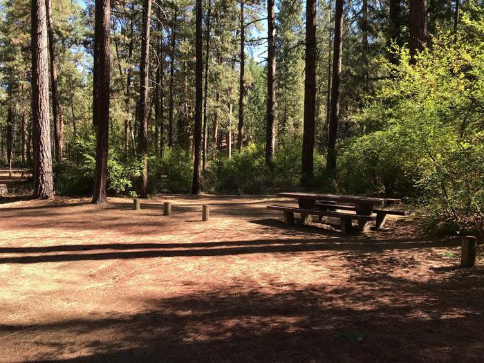 Allingham Campground #3