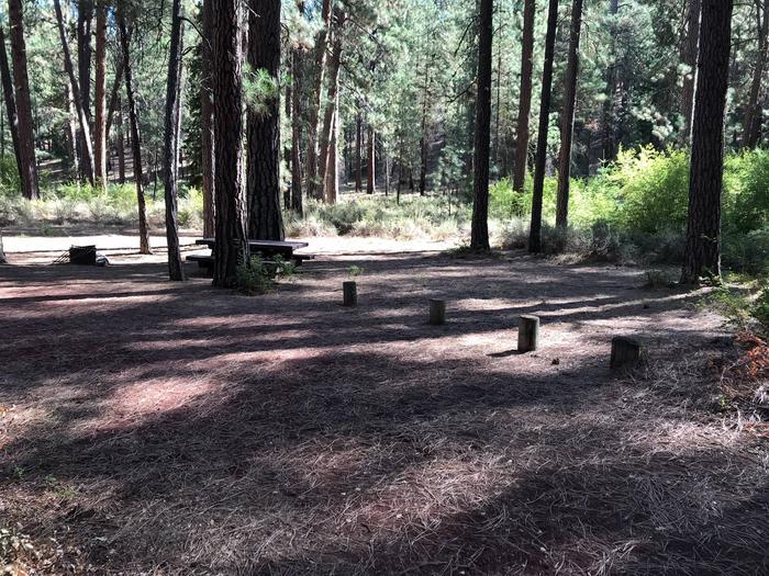 Allingham Campground #4