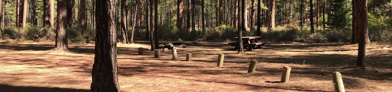 Allingham Campground #5
