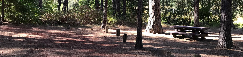 Allingham Campground #7