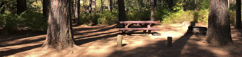 Allingham Campground #8