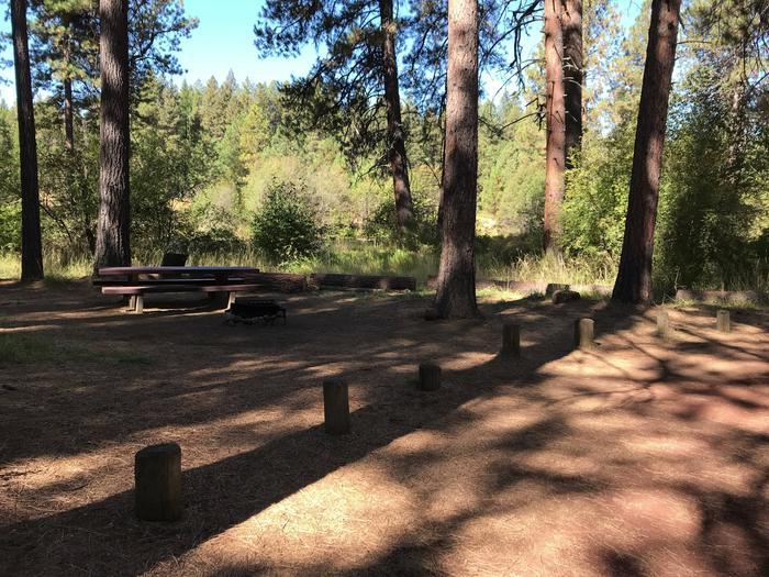 Allingham Campground #10