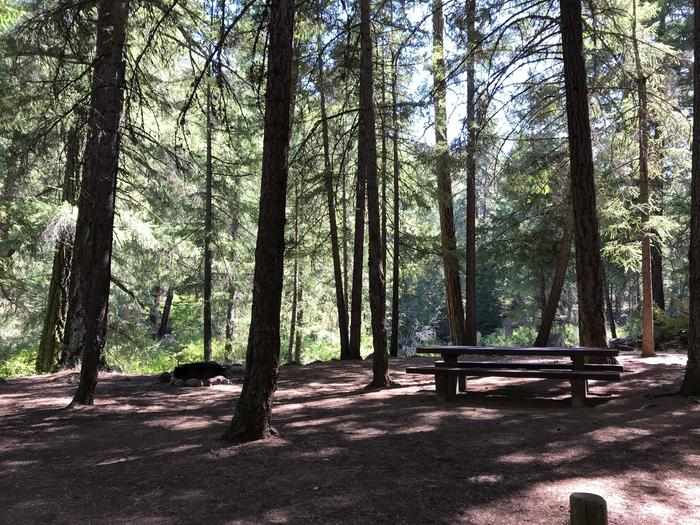 Candle Creek Campground #4