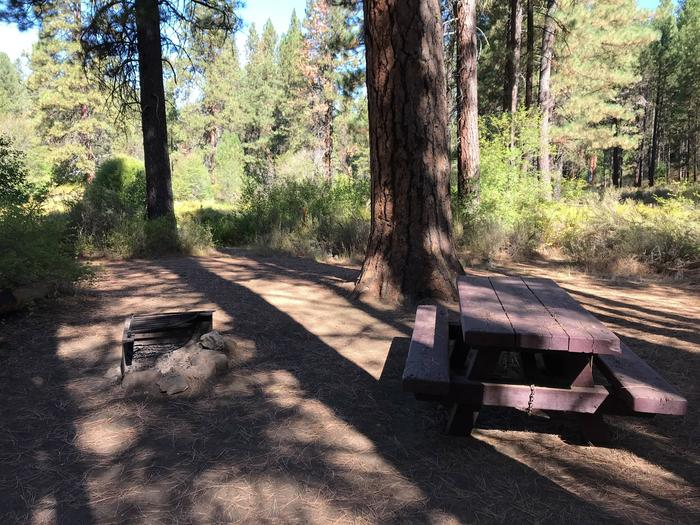Pine Rest Campground #1