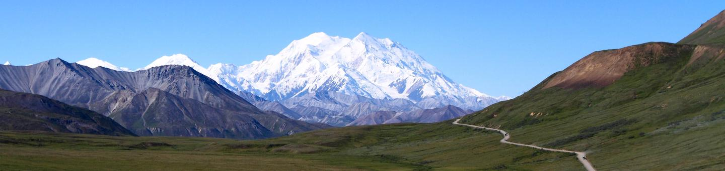 Denali towers above smaller grey and brown peaks and a green valley with a dirt roadDenali National Park and Preserve