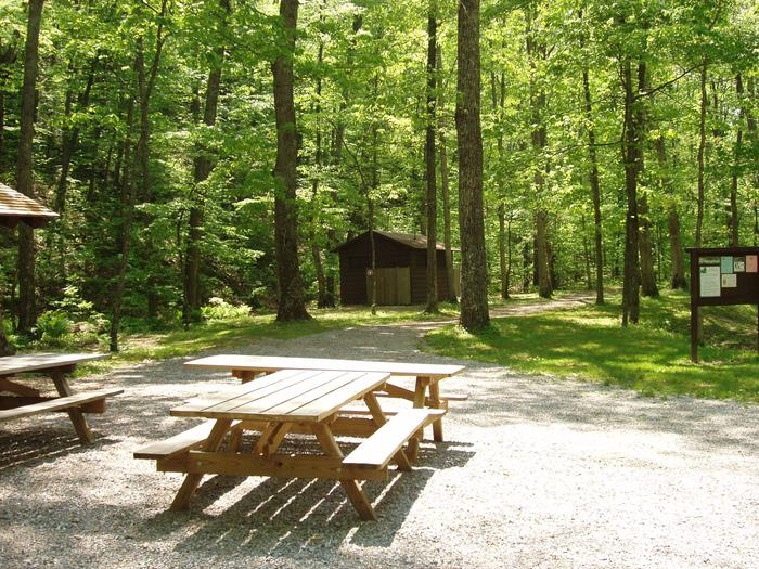 Williams Branch Group Picnic Area