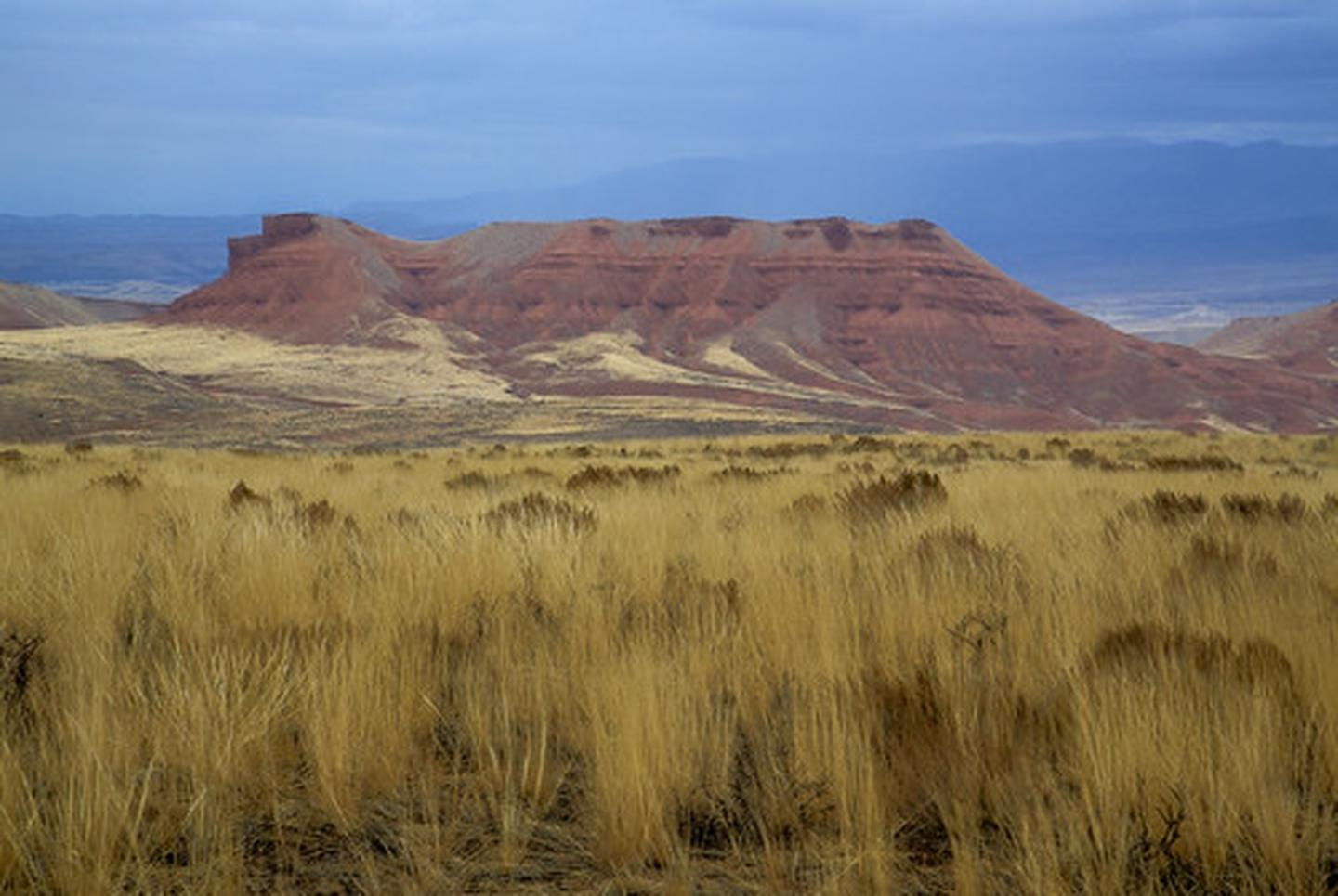 A butte with gold colored grass in the foreground and a stromy sky in the background