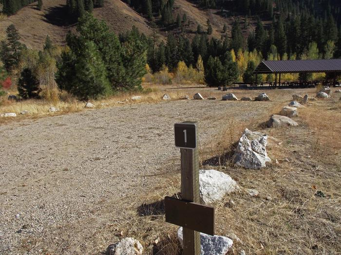 Great mountain view surrounded by cottonwood, aspen, Douglas fir and ponderosa pine trees and nearby pavillions have picnic tables on cement pads with vault toilets and drinking water availiable to you.Elks Flat Site #1