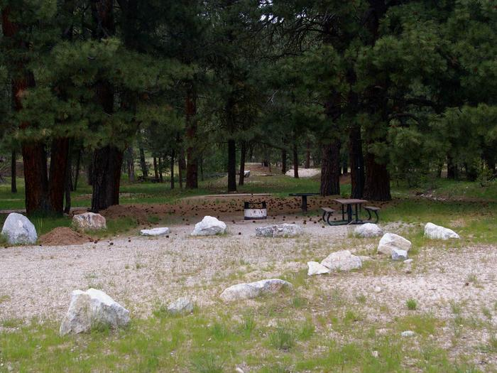 All campsites are surrounded by pine trees and have picnic tables, BBQ stands with gravel parking area and not far for hiking, biking, fishing, rafting and swimming.Elks Flat Campground