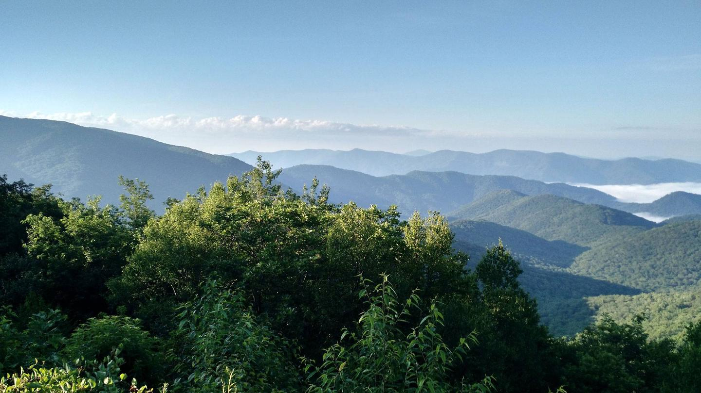 Scenic Pisgah Forest