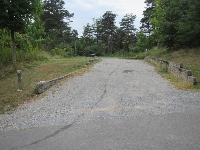 Site 234