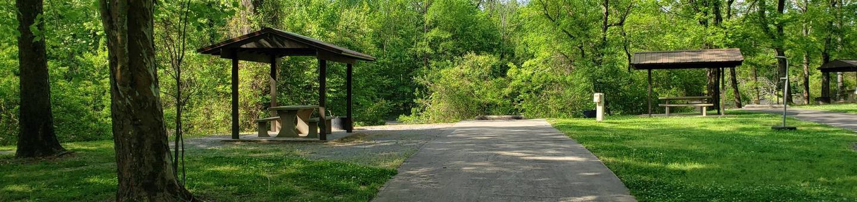 Campsite C7Back-in site