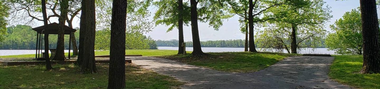 Campsite D12Back-in site