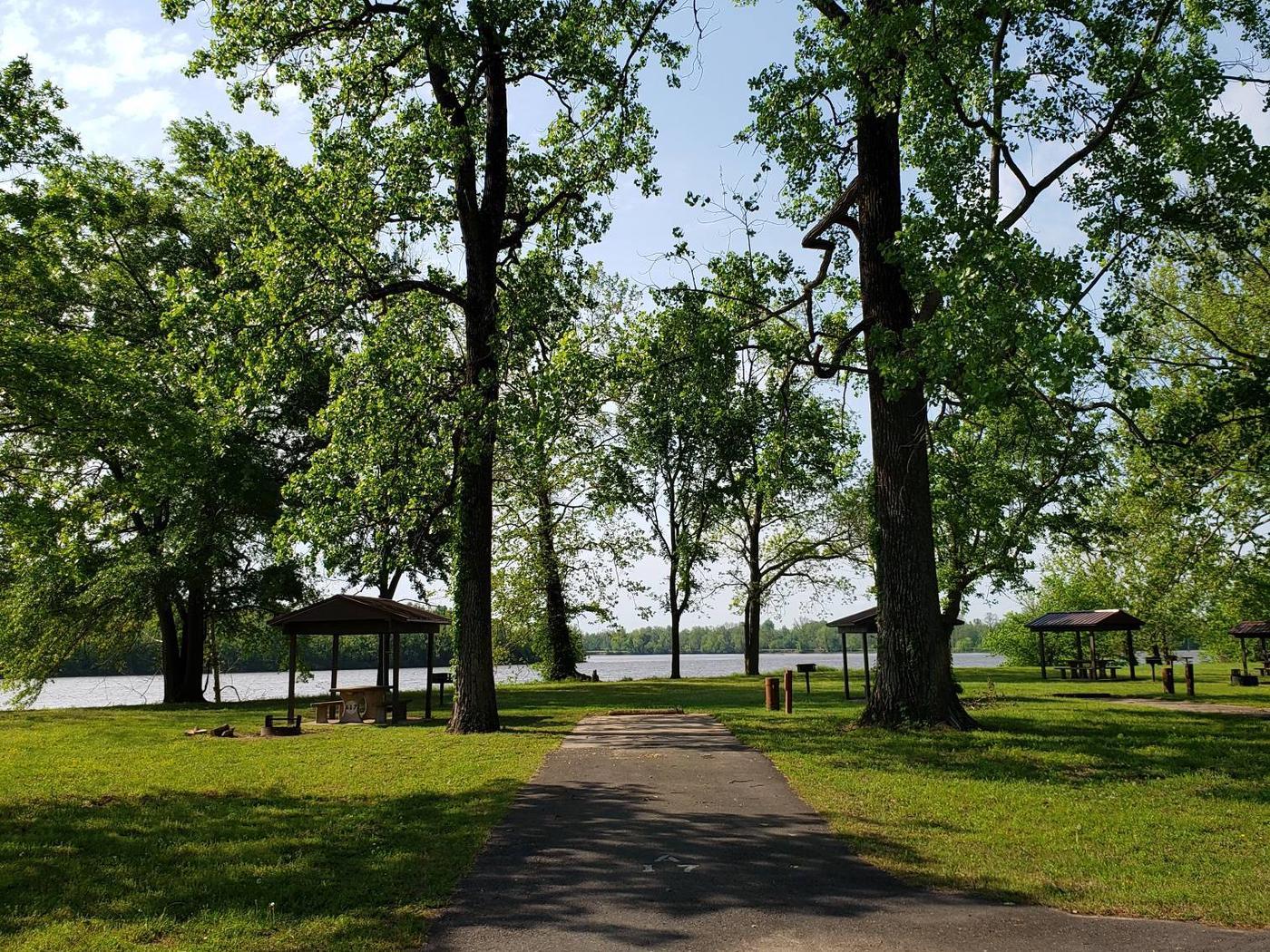 Campsite A17Back-in site