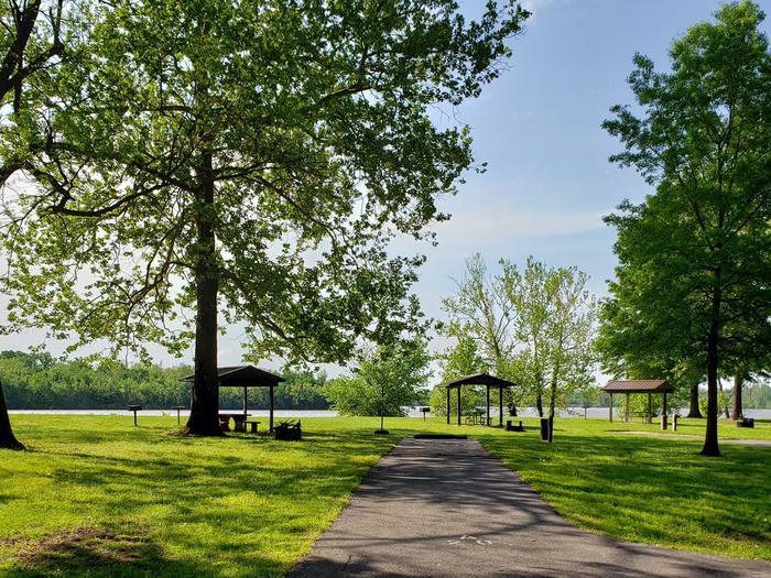 Campsite A20Back-in site