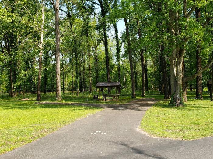 Campsite A24Back-in site