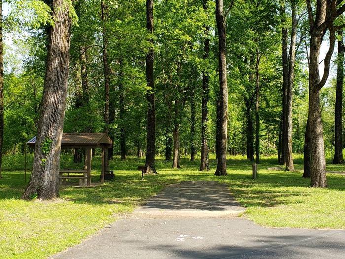Campsite A25Back-in site