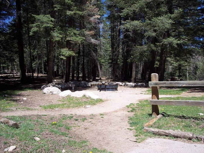 Group fire pit area at Black Bear Group Campground