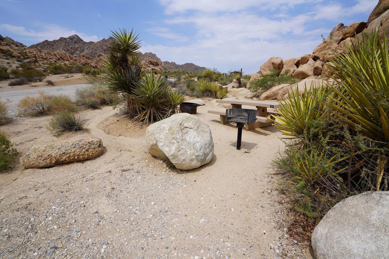 Indian Cove Site 84Campsite