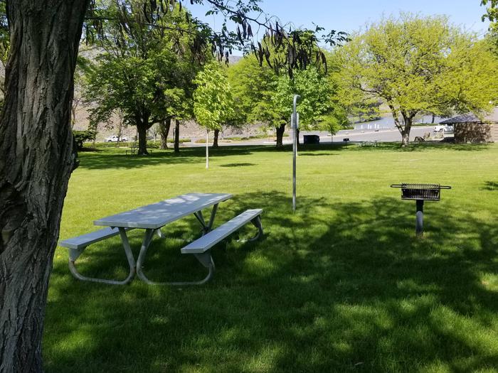 LePage Park Tent Site 5