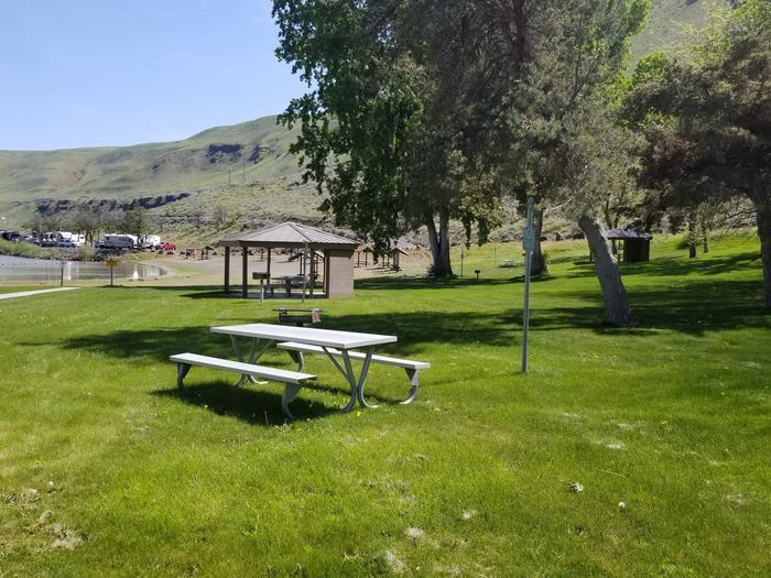 LePage Park Tent Site 8