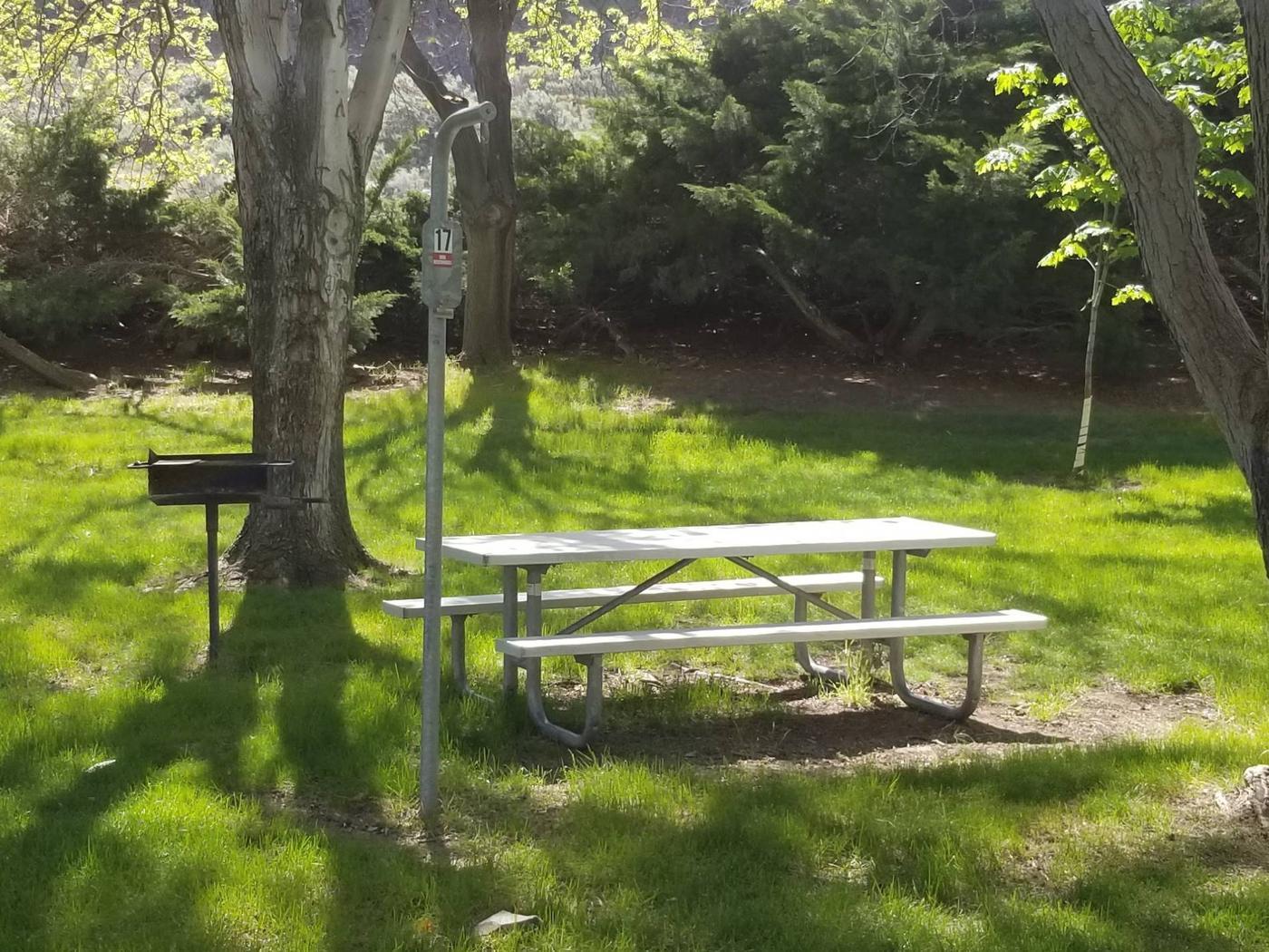 LePage T17LePage Park Tent Site 17