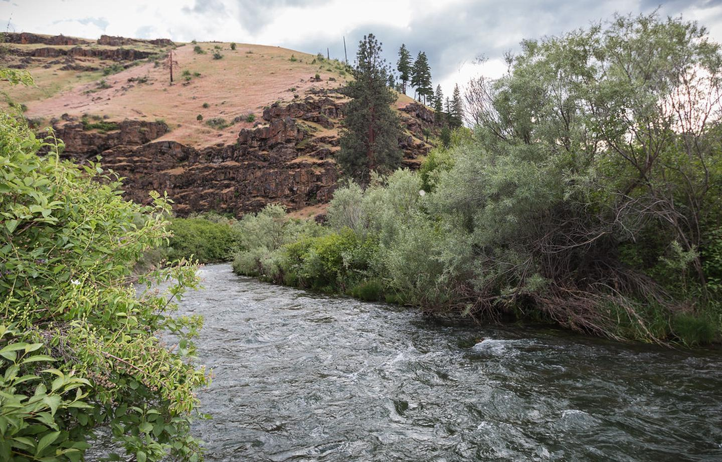 View of the South Fork John Day River with basalt cliff in distance.View of the South Fork John Day River with basalt cliff in distance.