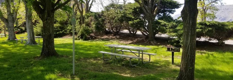 LePage Park Tent Site 2