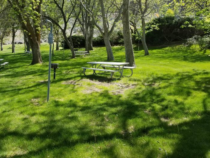 LePage Park Tent Site 12