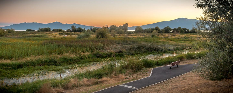 Evening view of Wood River Wetlands