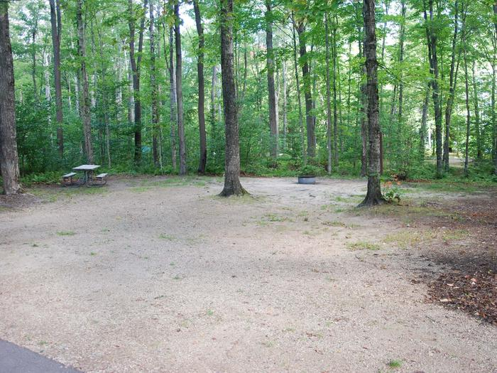 AuTrain Lake Campground site #04 full site view with table, fire pit, and picnic table.