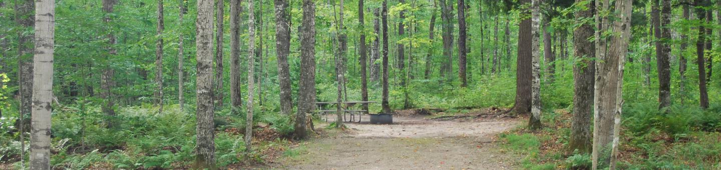 AuTrain Lake Campground site #10 full site view with table, fire pit, and picnic table.