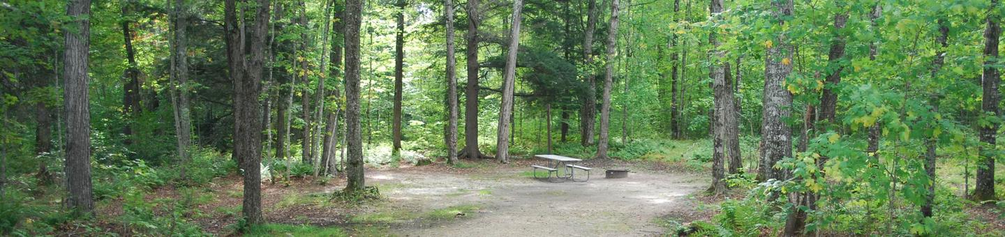 AuTrain Lake Campground site #11 full site view with table, fire pit, and picnic table.