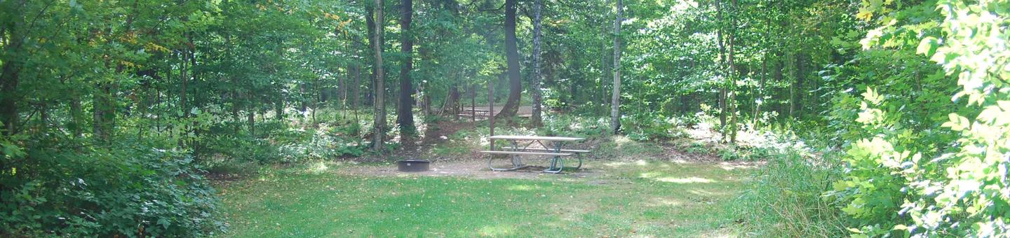AuTrain Lake Campground site #14 full site view with table, fire pit, and picnic table.