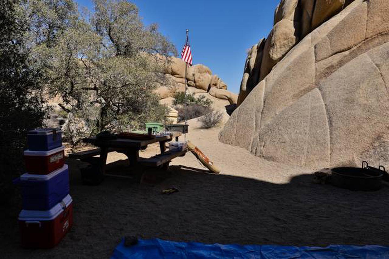 Jumbo Rocks site 2bSome shade
